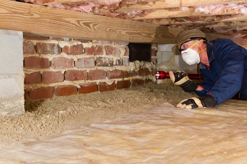 termite inspection 1